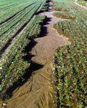 inondazione terreno compatto