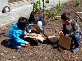 permacultura scuola verbania