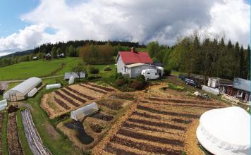 Ridgedale Permaculture Svezia