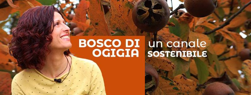 bosco ogigia facebook