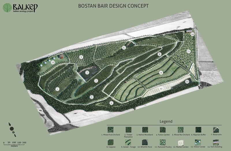 Bostan Bair Site desing - Log