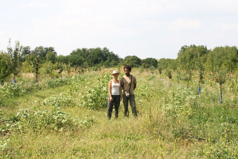 Progetto Agroforestale - Suhi Dol