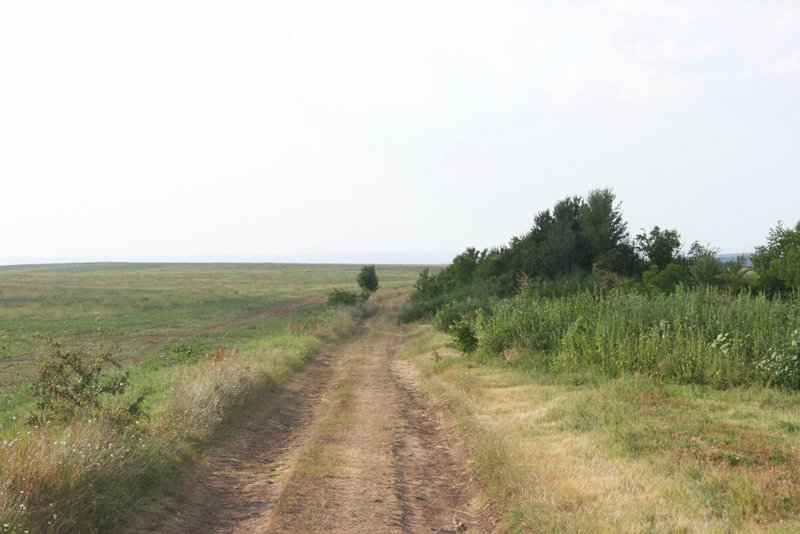 policoltura agroforestale bilgaria