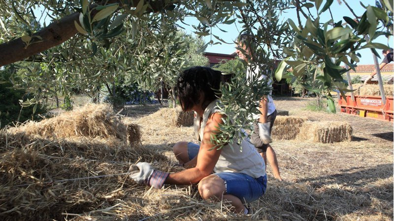 Sarpa Permacultura in Sardegna