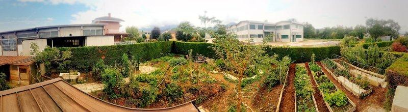 ValColla Garden