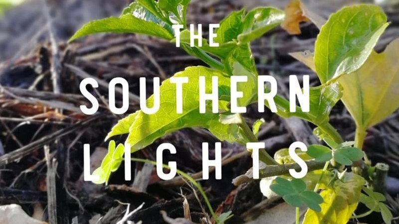 The Southern Light Permaculture