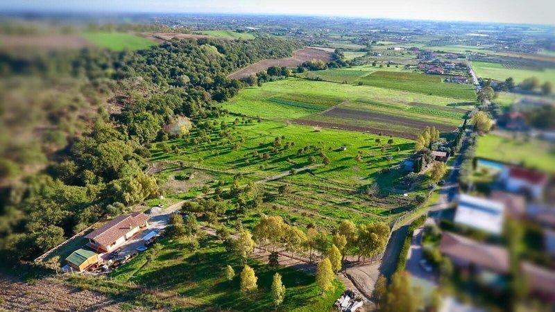 L'asino e la luna ecovillaggio permacultura