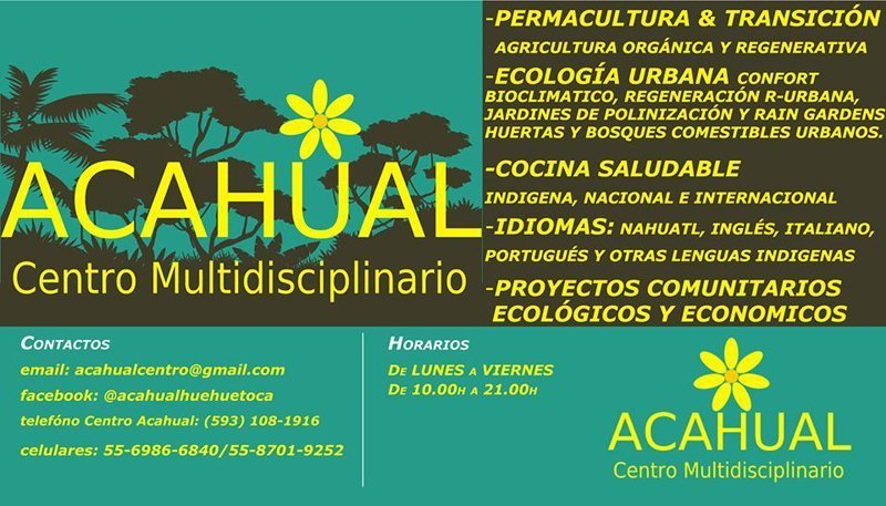 Centro Acahual banner