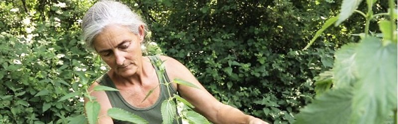 Saviana Parodi docente permacultura